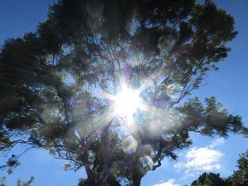 ミナクのブログ-sun