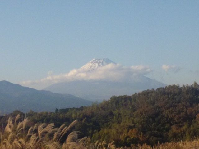 ミナクのブログ-Fuji
